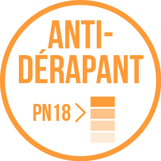 Antidérapant PN18 vignette sanitairepro.fr